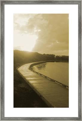 Sun Shower Framed Print by Amanda Holmes Tzafrir