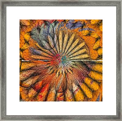Sun Spin By Nico Bielow Framed Print