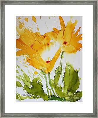 Sun Splashed Poppies Framed Print