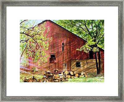 Sun Stroked Framed Print by Barbara Jewell