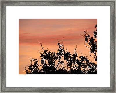 Sun Up Silhouette Framed Print by Joy Hardee