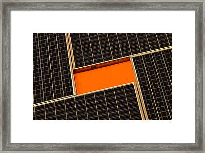 Sun Worshiper Framed Print by Christi Kraft