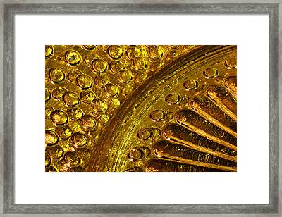 Sun Worshippers Gw Series Framed Print