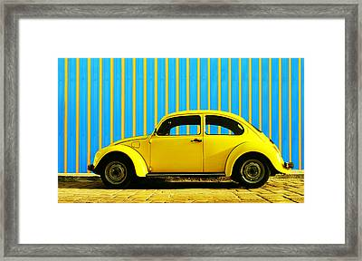 Sun Yellow Bug Framed Print by Laura Fasulo