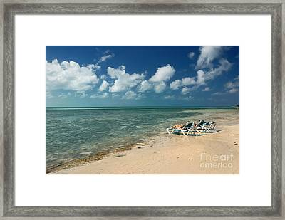 Sunbathers On The Beach Framed Print by Amy Cicconi