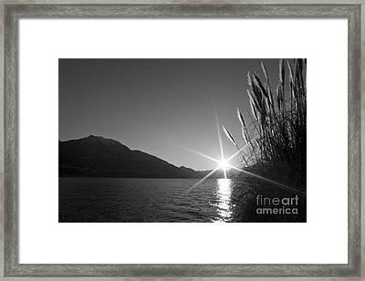 Sunbeam Framed Print by Maurizio Bacciarini