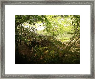 Sunbeam  Framed Print by Olivia  M Dickerson
