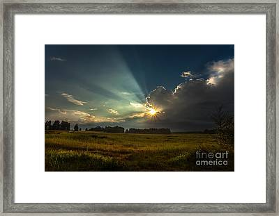 Framed Print featuring the photograph Sunbeam by Rose-Maries Pictures