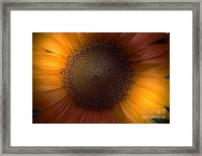 Sunblast Framed Print by Marco Crupi