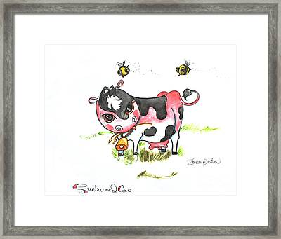 Sunburned Cow Framed Print