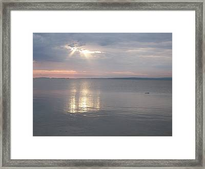 Sunburst Framed Print by Amanda Batten