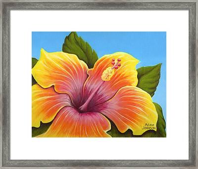 Sunburst Hibiscus Framed Print by Adam Johnson