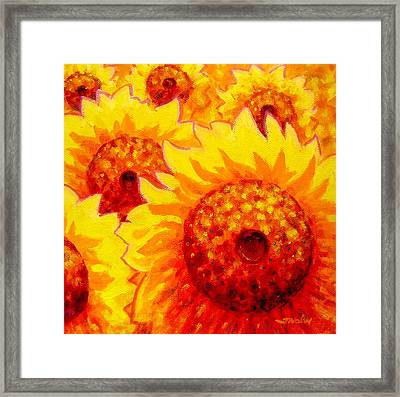 Sunburst Framed Print by John  Nolan