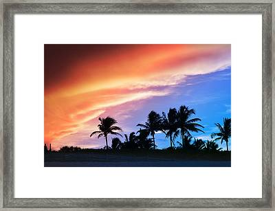 Sunburst Framed Print by Laura Fasulo