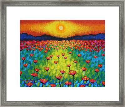Sunburst Poppies Framed Print by John  Nolan