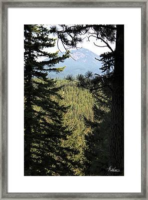 Suncadia Framed Print by Marti Green