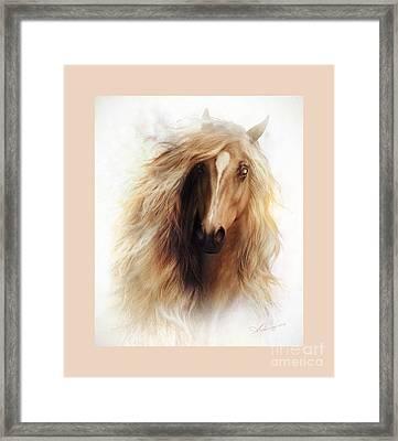 Sundance Mustang Frame Framed Print by Shanina Conway