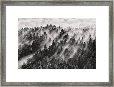 Sundance No.1 Framed Print