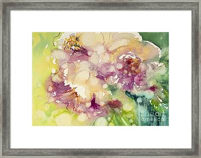 Sundappled Rose Framed Print