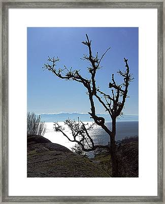 Sunday Afternoon No. 2 Framed Print by Janet Ashworth