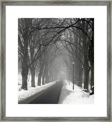 Sunday Afternoon Winter Framed Print by Odd Jeppesen