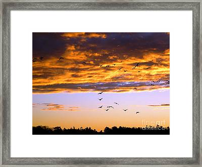 Gods Outdoor Church Sunday Framed Print