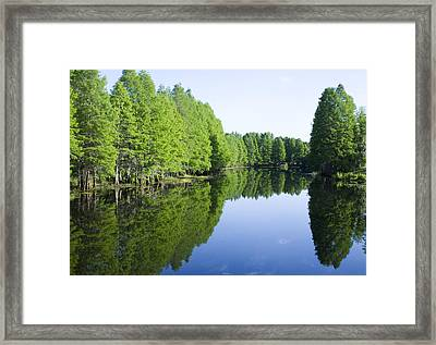 Sunday Morning Florida Framed Print by William Patrick