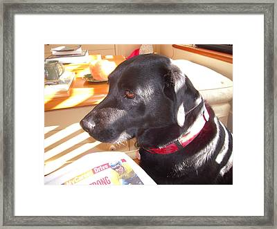 Framed Print featuring the photograph Sunday Paper Time by Ankya Klay