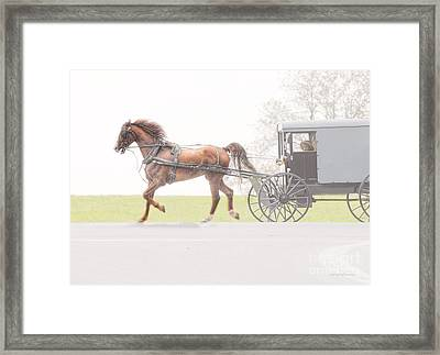Framed Print featuring the photograph Sunday Ride by Dyle   Warren