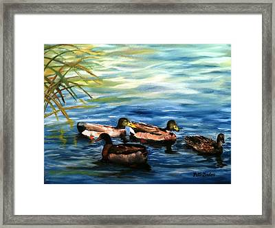 Sunday Swim Framed Print