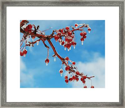 Sunday With Cherries On Top Framed Print by Frozen in Time Fine Art Photography