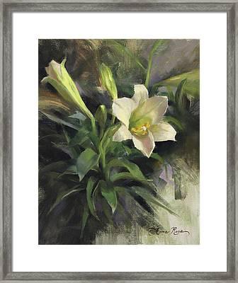 Sunday's Lily Framed Print by Anna Rose Bain