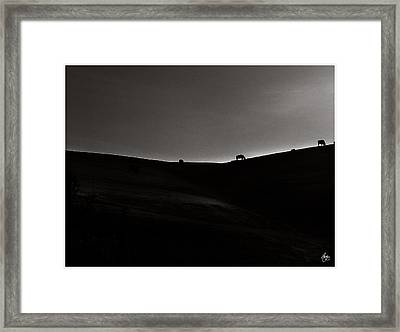Sundown Monochrome Framed Print by Wayne King