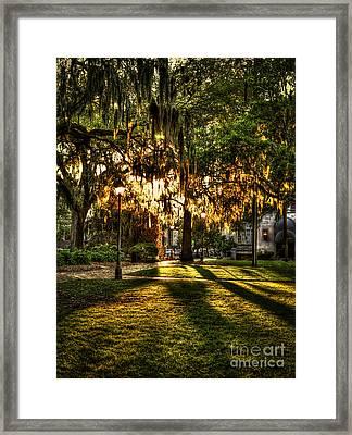Sundown On Johnson Square In Savannah Framed Print