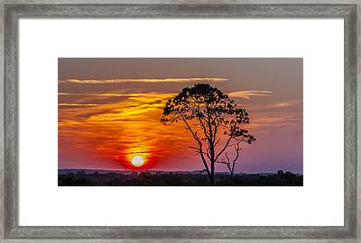 Sundown With Tree Framed Print