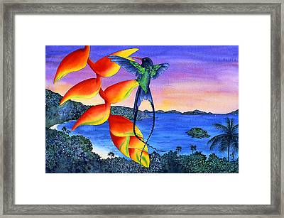 Sundowner At Cinnamon Framed Print by Carolyn Steele