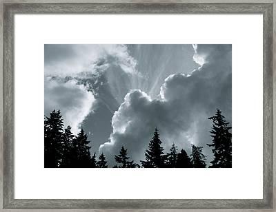 Sunflare Framed Print by Darren Edwards