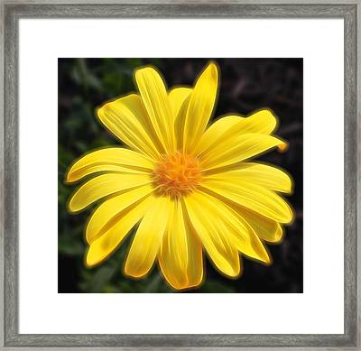 Sunflare Framed Print by Judy Vincent