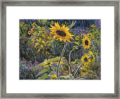 Sunfloral Framed Print