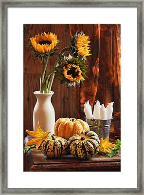 Sunflower And Gourds Still Life Framed Print by Amanda Elwell