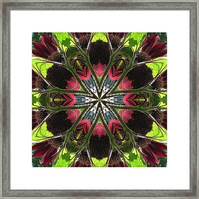 Sunflower And Green Leaf Framed Print