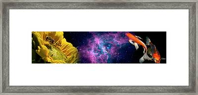 Sunflower And Koi Carp In Space Framed Print by Panoramic Images