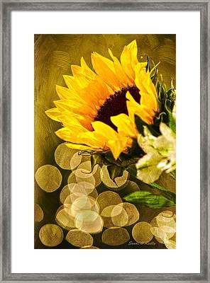 Sunflower And The Lights Framed Print