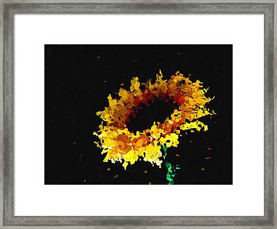 Sunflower Framed Print by Ann Powell