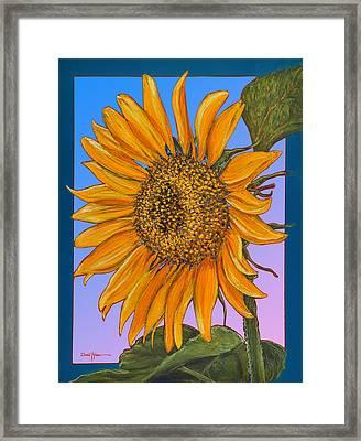 Da154 Sunflower By Daniel Adams Framed Print