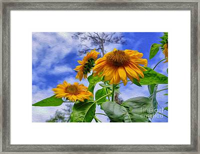 Sunflower Art Framed Print by George Paris