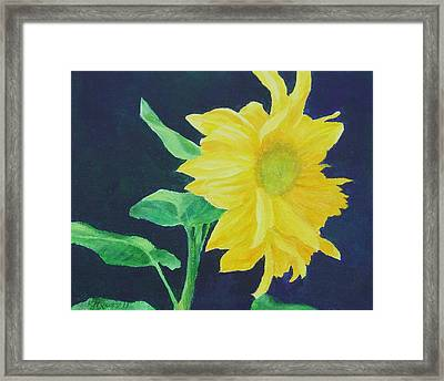 Sunflower Ballet Original Framed Print