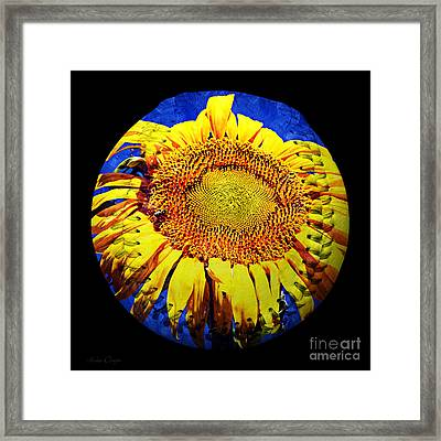 Sunflower Baseball Square Framed Print by Andee Design