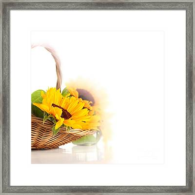 Sunflower Beautiful Framed Print by Boon Mee