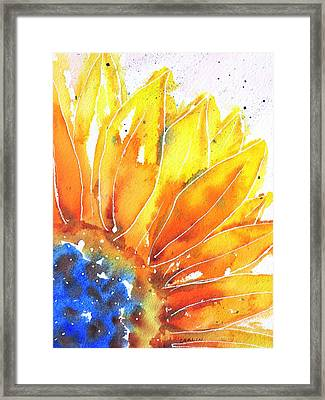 Sunflower Blue Orange And Yellow Framed Print